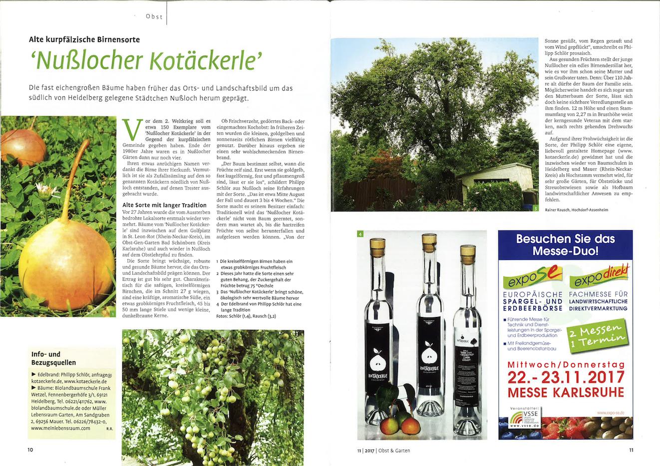 Nusslocher Kotäckerle in der Zeitschrift Obst&Garten 11/2017